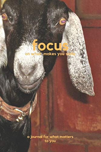 Focus on a different perspective: a journal for what matters to you (Focus Journal, Band 6)