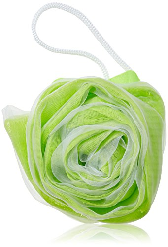 Croll & Denecke Fleur de douche Lot de 5