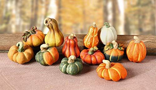 FRANK FLECHTWAREN Zucche Decorative in Terracotta, Set di 12