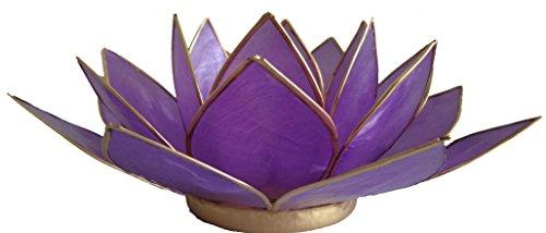 Trimontium Teelichthalter Lavendelschimmer in Form Einer dreiblättrigen Lotusblüte, Capiz-Muschel, Lavendel, 13.5 x 13.5 x 7 cm