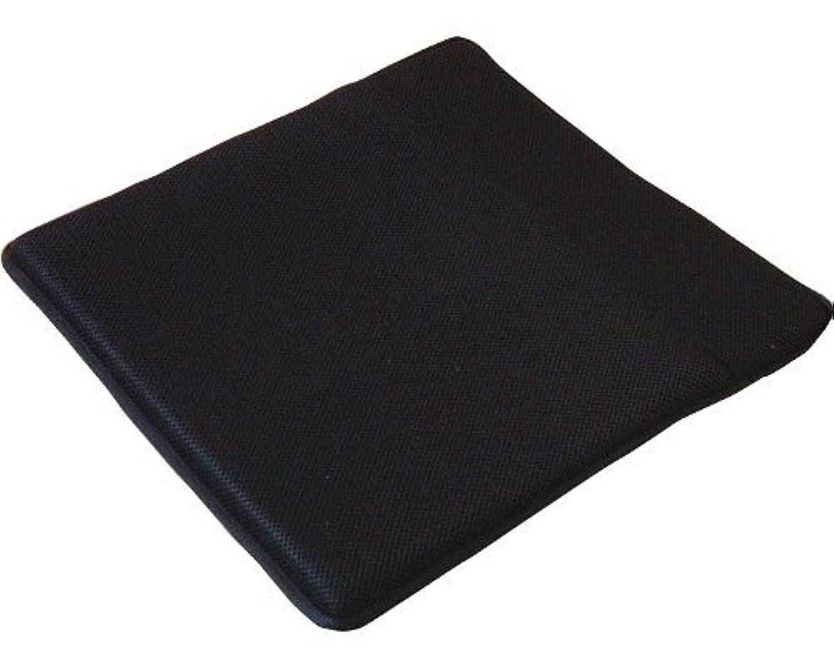 収入静脈季節サニア工業 ズレないクッション 防水 (40×40×4cm)