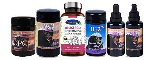 Robert Franz - OPC (60 Kapseln) + Vitamin D3 (50 ml) + Vitamin K2 (50 ml) + MSM Kapseln (360 Stück) + B12 Pastillen (100 Stück) und Ayursana - Bio Acerola Pulver (175 g)