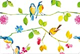 Watercolor Birds Note Cards (Stationery)