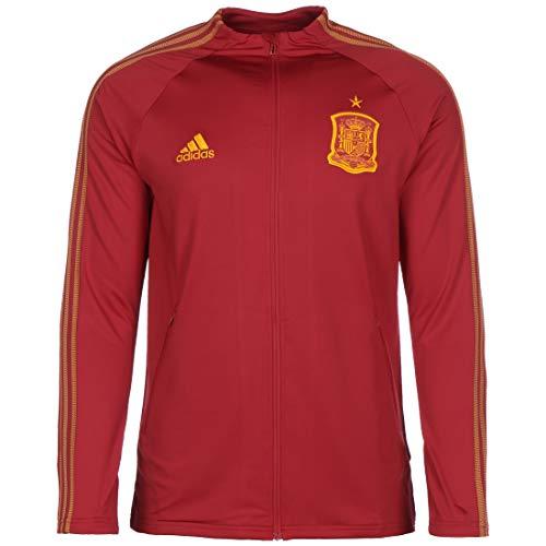 adidas Fef Anthem Jkt Sport Jacket, Hombre, Victory Red, L