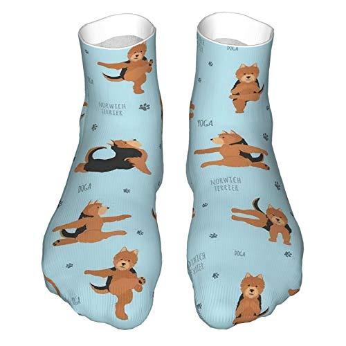 Sommersocken aus Baumwolle, atmungsaktiv, für Oga Hunde, Übungen, Norwich Terrie, lässig, mittelhoch, Wadenkleid für Damen und Herren