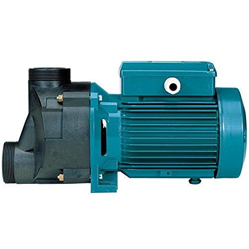 Selbstentleerende Whirlpoolpumpen SPA31m/A 0,75kW 1Hp 230V Calpeda SPAM