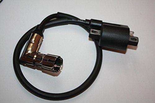 Shineray Zündspule + Zündkerzenstecker EGL Eagle Lyda 203E 203D 200 250 Quad ATV Coil