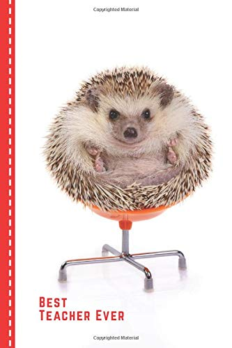 Best Teacher Ever: Funny Hedgehog Sitting in Office Chair Cover / Hedgehog Teacher Gift / Small 6x9 Lined Journal Notebook To Write In / Perfect for Teacher Appreciation Day / Cute Card Alternative