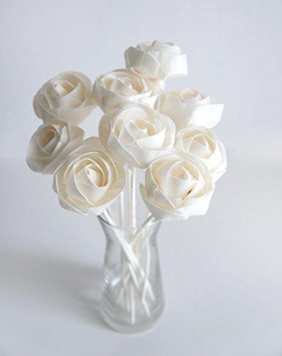 Exotic Plawanature - Juego de 10 flores blancas delgadas de madera de Sola con difusor de caña para fragancia del hogar.