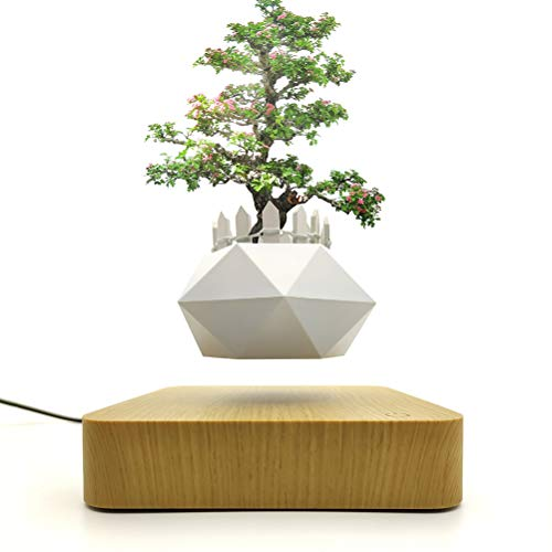 Jasis Woo Levitating Air Bonsai Plant Stand Rotation Planters for Room Decor, Magnetic Suspension Floating Pot with Same Color Wooden Fence (Light Wood)