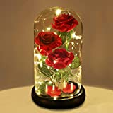 Dream of Flowers Beauty and The Beast Red Rose in Glass Dome with Fairy Light String, Valentine Rose Gift for Her, Birthday, Mother's Day Gifts
