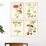 CloudShang Vintage Seta Botánico Poster Atlas de Comestible y Venenoso Hongos Plantas Poster Seta Pared Arte Impresiones Escuela Aula Oficina Pared Decoracion G06139