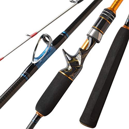 Canne da pesca Pesca costiera Jigging mare Barca asta in fibra di carbonio di filatura di richiamo di lega di titanio Suggerimento Casting Canne da pesca ( Color : Baitcasting rod , Length : 1.98m )
