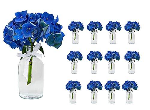 Casavetro - Set di 12 piccoli vasi New-Bost-100, con boccetta di vetro trasparente, per matrimoni, 12 fiocchi bianchi