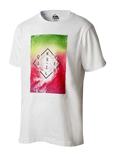 Quiksilver Camiseta algodón de niño Manga Corta 47504 (10)