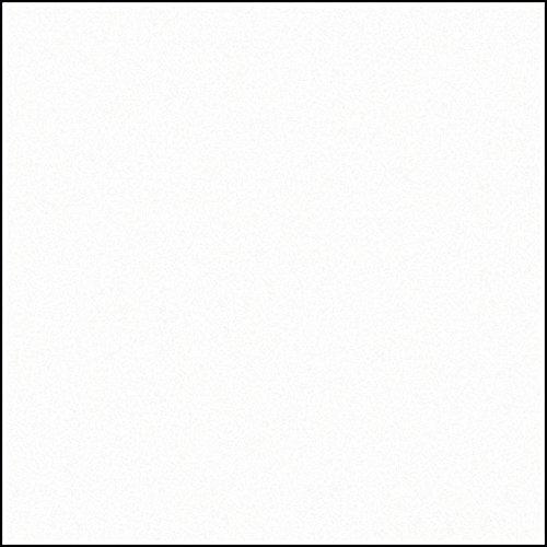 Gardinia Flächenvorhang Stoff Uni 612 Uni weiß 60 x 245 cm