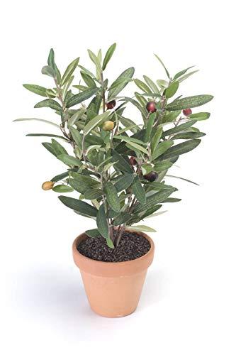 PARC Network Mini Olivenbaum Künstlich im Terracottatopf, Oliven, 40cm - Kunstbaum - Künstlicher Olivenbaum - Kunst Olivenbaum - Kunstpflanze
