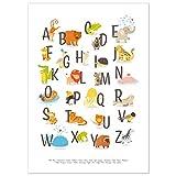 kizibi® ABC Poster DIN A2 für Kinderzimmer, Alphabet