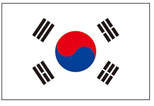 8 Large South Korea Flag Tattoos: Korean Party Favors