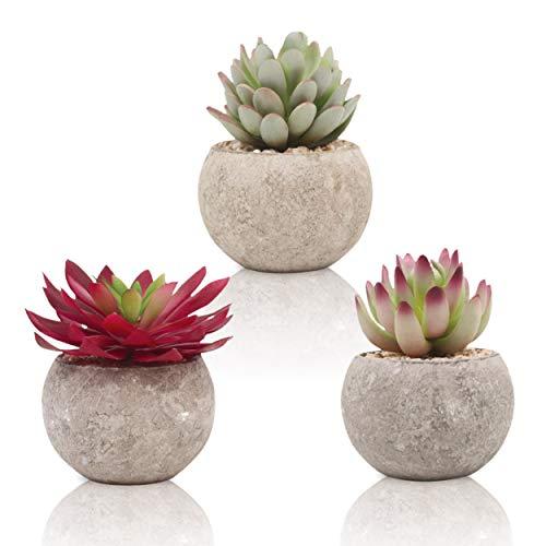 TOREDOO Hyggelig Home - Juego de 3 plantas artificiales de 10 cm, decoración para baño, cocina,...