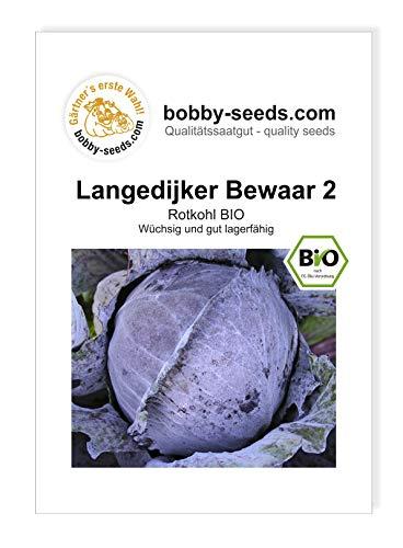 Langedijker Bewaar 2 BIO-Kohlsamen von Bobby-Seeds, Portion