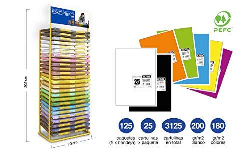 3125 Cartulinas Grandes y Bonitas - Expositor con 25 Bandejas con amplio surtido de colores - Tamaño 50x65cm