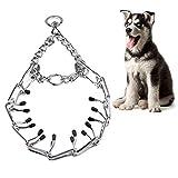 Comtervi Hunde Würgehalsbänder Hundehalsband Kette Würgehalsband Halsbänder Halskette Kettenhalsband (3.5mm*55cm)