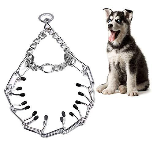Pywee Ausbildung Hund Halskette Metall Eisen Abnehmbare Ausbildung Hund Halsbänder Halskette Kettenhalsband