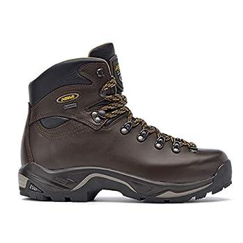 Asolo TPS 520 GV Evo Hiking Boot - Men s - 10.5 - Chestnut