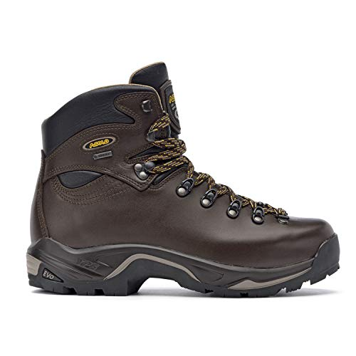 Asolo TPS 520 GV Evo Backpacking Boot - Wide - Men's Chestnut, 11.5