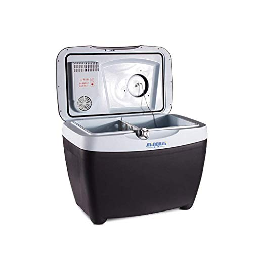 Auto Kühlschrank-Mini-Kühlschrank 12v 220v, 32L Compact Kühlschrank Hält 46 X 330ml Dosen | LOLDF1