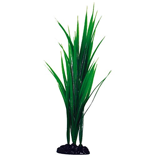 Wave Plant Classic Bamboo Sm