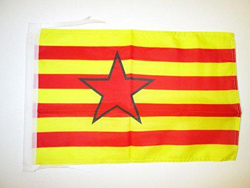 AZ FLAG Bandera de Aragon ESTRELADA INDEPENDENTISTA 45x30cm - BANDERINA ARAGONESA - NACIONALISMO ARAGONÉS 30 x 45 cm cordeles