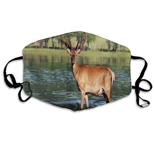 Leuke mountainbike in het water met een bos achtergrond mannelijk freedom Habitat Printing Safety Mouth Cover voor volwassenen
