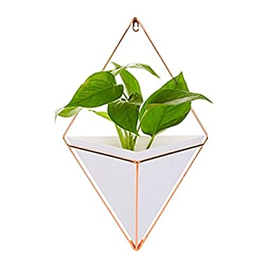 Aneil Large Hanging Planter Vase Air Plant Pot Wall Succulents Decor Container Geometric Characteristic Living Room Decorations, White