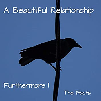 Furthermore I - The Facts