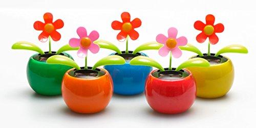 5er Set Solar Wackelblumen Solar Wackelblume Solarblume Wackelfigur Blume Grün, Orange, Pink, Blau, Rot Deko Fensterbank Auto Dekoblume