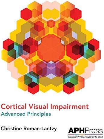 Cortical Visual Impairment Advanced Principles product image