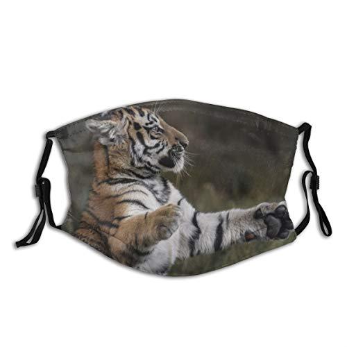 vilico Unisex Mehrzweck-Gesichtsmaske, Tigerpfoten, Gras, jung, verspielt, wiederverwendbar, atmungsaktiv, für heiße Sommer, Outdoor, Einkaufen, Sport