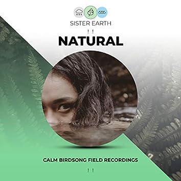 ! ! Calm Natural Birdsong Field Recordings ! !