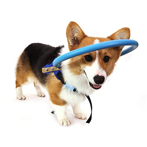 Pssopp Dispositivo para la guía del arnés del Perro Ciego Mascotas seguras Anticolisión Collar del Collar Catarata Guía del círculo Protector del Animal para discapacitados visuales (XS)