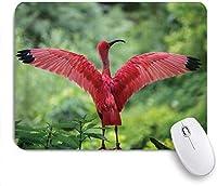 マウスパッド 個性的 おしゃれ 柔軟 かわいい ゴム製裏面 ゲーミングマウスパッド PC ノートパソコン オフィス用 デスクマット 滑り止め 耐久性が良い おもしろいパターン (鳥鶴ダンス画像優雅な姿勢赤戴冠させたクレーン開いた翼ストレッチネック緑豊かな森)