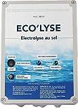ByPiscine - Electrolyseur au sel pour Piscine jusqu'à 90 m3, 4 GR/L, Production 19 GR/L, modèle Eco'lyse 90 de