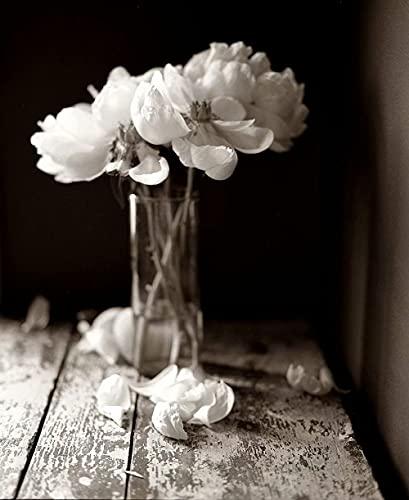 Vaso De Cristal Blanco Y Negro Con Flores Rosas﹣Pintar Por Números﹣Pintura De...