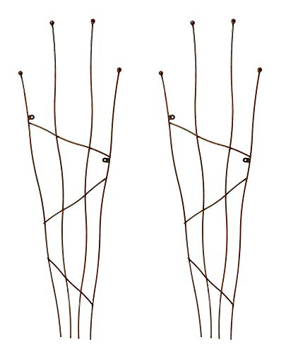 Ruddings Wood Set of 2 x Natural Rust Crooked Metal Wall Trellis - Garden Plant Support Frame
