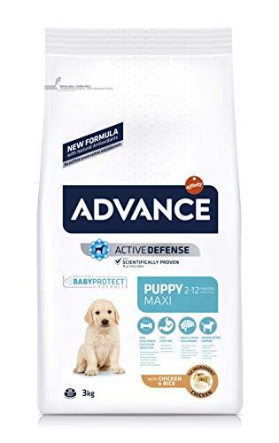 ADVANCE Maxi Puppy - Pienso Para Cachorros De Razas Grandes - 3 Kg ✅