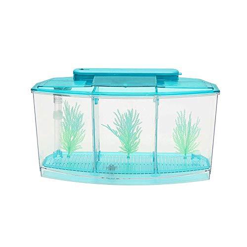 WYPDE Mini Piscine écosystème Aquarium Fish Tank Fish Aquarium Tank LED Light Divider Filtre Eau Parfait pour Les Petits Poissons (Color : Blue)