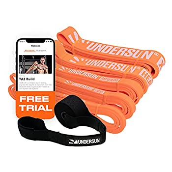 Undersun Fitness Resistance Loop Exercise Bands Set of 5 Pullup Assistance Workout Bands with Free Week Workout Program & Door Anchor Stretching Mobility & Powerlifting Resistance Bands