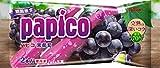グリコ パピコ 黒葡萄 160ml(80ml×2本)×20袋