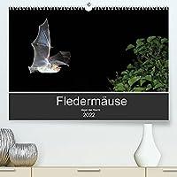 Fledermaeuse - Jaeger der Nacht (Premium, hochwertiger DIN A2 Wandkalender 2022, Kunstdruck in Hochglanz): Fotos unserer europaeische Fledermaeusen aus allen Jahreszeiten. (Monatskalender, 14 Seiten )